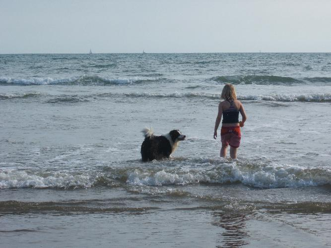 Enjoy the waves at Black Rock Sands with your best friend