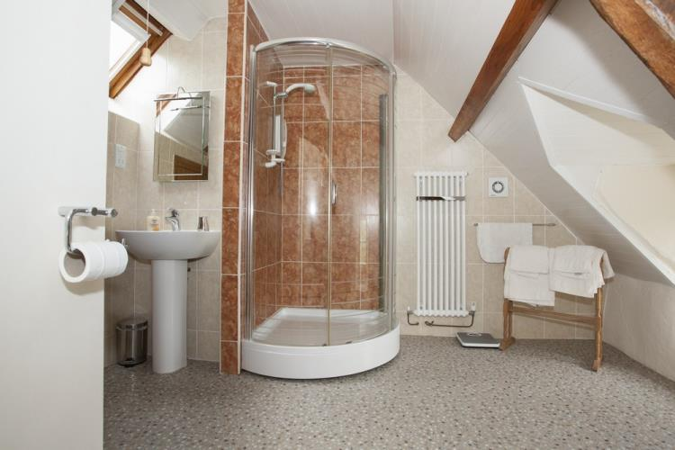 Spacious shower room at Betws Bach