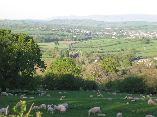 View from one of our fields Farmhouse is in the centre of the picture and Brecon is in the background