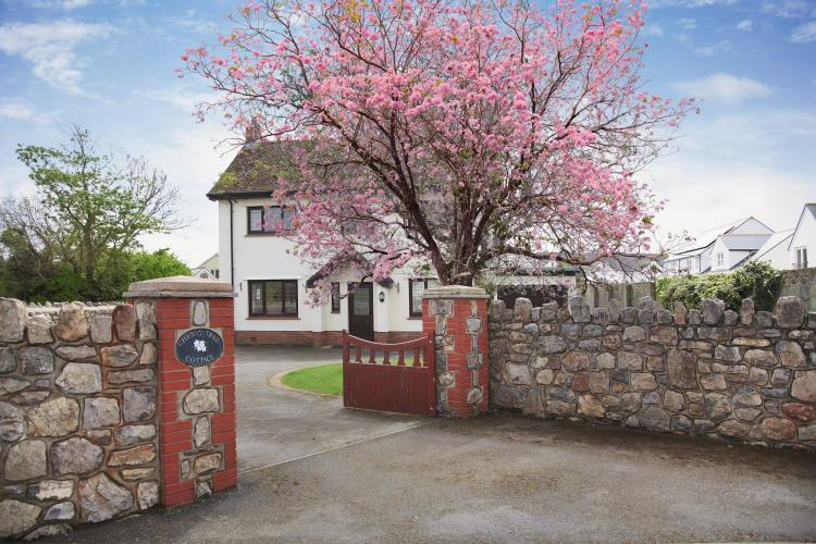 Cherry Tree Cottage in full bloom