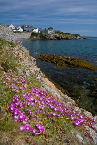 Coastal Path in Moelfre