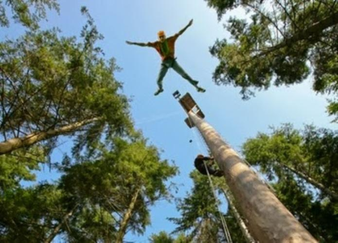 tree top adventure snowdonia snowdonia photo gallery
