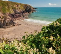 Superb Beaches - Y Bwthyn - St Davids Cottage Pembrokeshire
