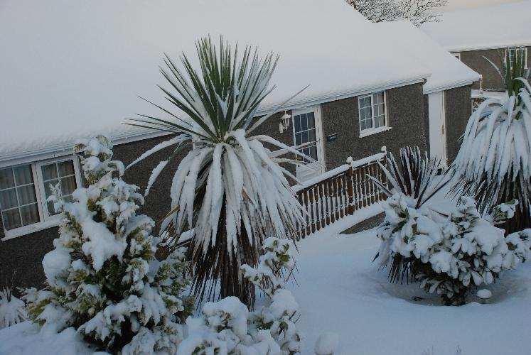 Winters arrived - Rhiwlas Cottages - Anglesey Coastal Cottages - Near Moelfre