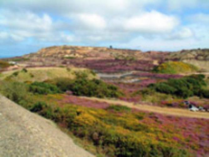 Parys mountain - Rhiwlas Cottages - Anglesey Coastal Cottages - Near Moelfre