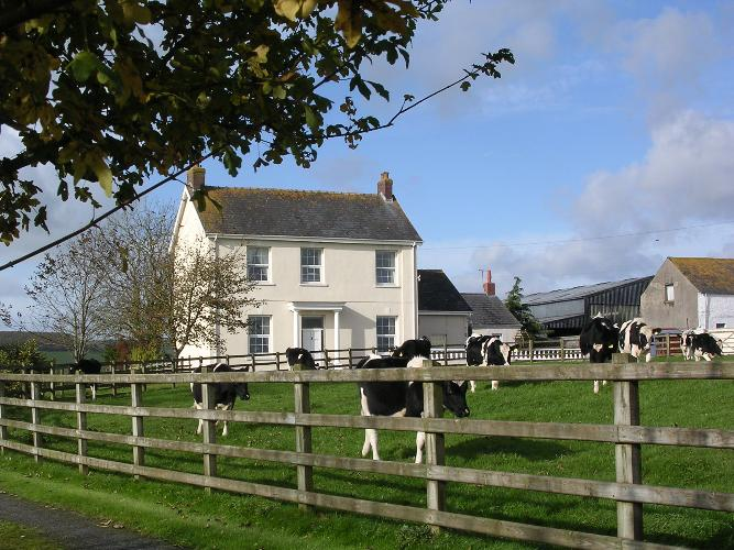Farmhouse Bed And Breakfast In Wales