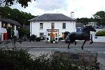 The Feathers Royal - Hotels and Inns Aberaeron Ceredigion West Wales