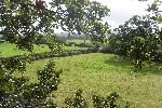 Corn Bwch Campsite Campsites St Asaph North Wales