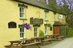 The Golden Lion Inn - Newport Bed and Breakfast