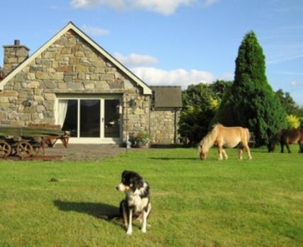 Tyddyn-du Farm ~ Luxury Suites, Near Porthmadog Holiday Cottages/Self Catering Porthmadog Snowdonia