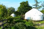 Broome Retreat - Glamping & Camping Yurts in Powys, Mid Wales